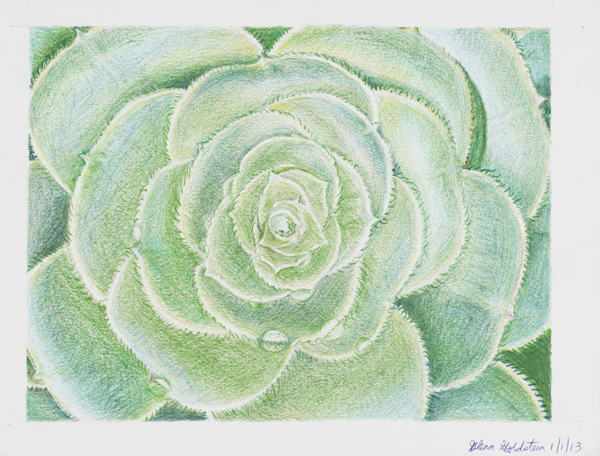 painting on canvas still life succulent cactus